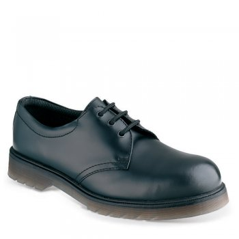 SS100 Safety Shoe